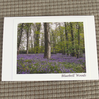 A6 Bluebell Woods Greeting Card