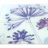"""Fennel Canopy"" Set of 4 Glass Coasters"