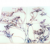 """Grasses in White"" Set of 4 Glass Coasters"