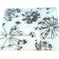 """White Cow Parsley"" Set of 4 Glass Coasters"