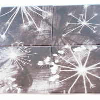 """Monochrome Cow Parsley"" Set of 4 Glass Coasters"