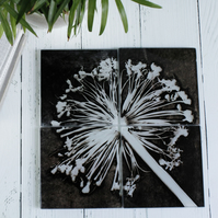 Black & White Botanical Design Glass Coaster Set, Home Decor, Perfect Gift Set