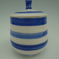 Blue and White Porcelain Lidded Pot