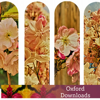 Cherry Blossom Photography Printable Bookmarks 1 - JPEG E-Mail
