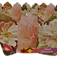 Shabby Chic Cherry Blossom Printable Gift Tags - JPEG E-Mail