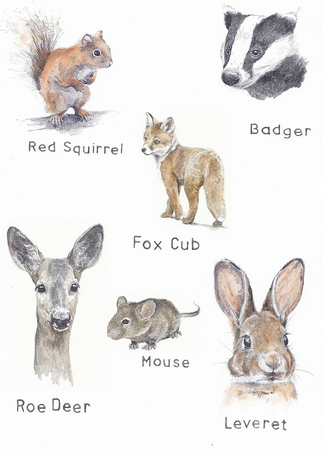 Animal Friends Collection - A4 Print
