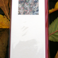 5 x PHOTO CARDS - Frosty Cotonyaster