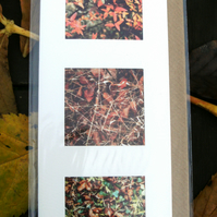 PHOTO CARDS - Autumn Leaves triple