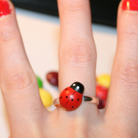 A LadyBug Landed On My Finger Ring