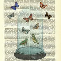 Glass Dome with Butterflies - Vintage Encyclopaedia Print