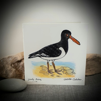 Hand drawn oyster catcher coastal bird card