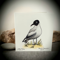 Hand drawn black headed gull coastal bird card