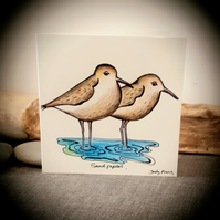 Hand drawn sandpipers coastal birds card