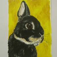ACEO Pet Portrait Original Art Painting cat dog rabbit guinea pig hamster rat