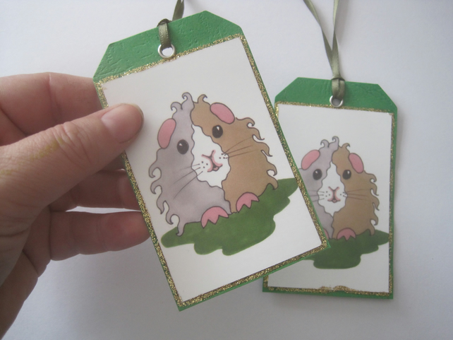 Guinea Pig Gift Tag x2
