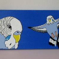 SALE Budgie Budgerigar Original Acrylic Painting Bird Picture