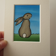 ACEO Rabbit aceo Bunny