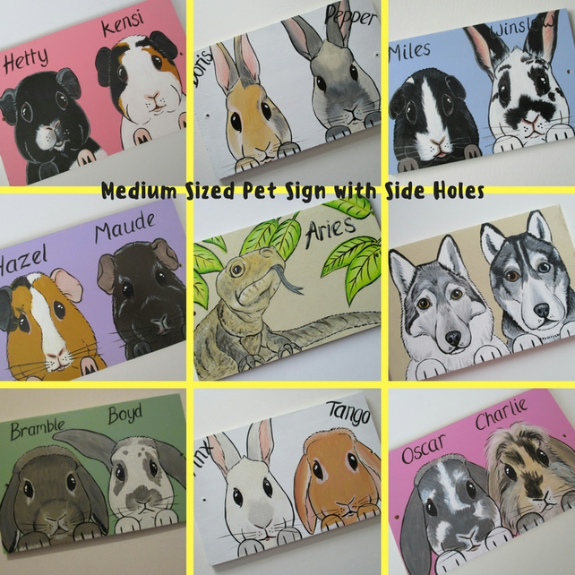 Personalised Pet Sign customised for rabbits guinea pigs cats dogs M side holes