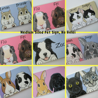 Personalised Pet Sign customised for rabbits guinea pigs cats dogs M NO HOLES