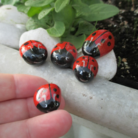 Painted Pebble Rock Stone Ladybird Family x 5 Pot Topper Garden Ornament Fairy 4