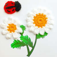 Crochet white daisy and ladybird card