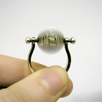 spinning ring, thaumatrope, bird and cage silver ring