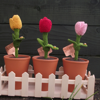 3 Crocheted Tulips in a window box, Perfect for the non gardening gardener.