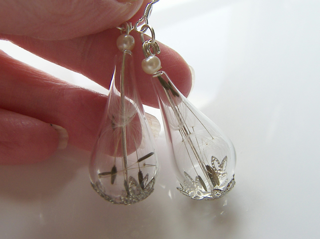 Real Dandelion Seeds Teardrop Earrings - MAKE A WISH