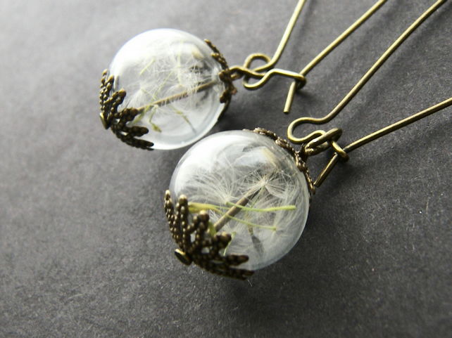 Real Dandelion Seeds Glass Globe Earrings - MAKE A WISH