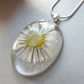 Real Daisy Necklace in Resin Summer Nature - DAISY