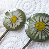 Pressed Daisy Hair Pins Bobby Pin Set of 2 - DAISY