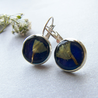 Pressed Flower Earrings in Blue Eco Resin