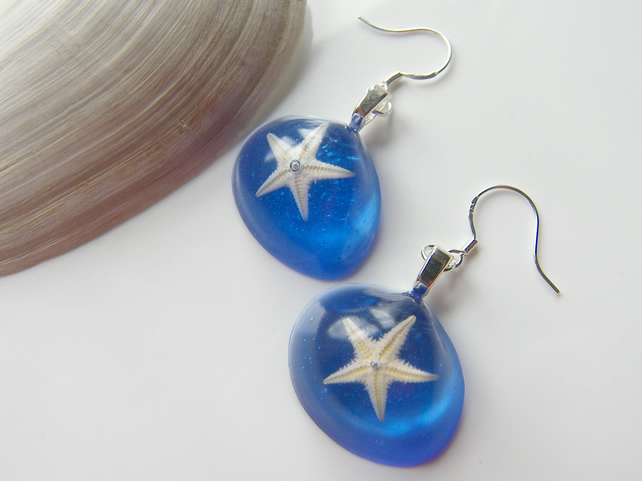 Real Starfish Blue Earrings - STARFISH