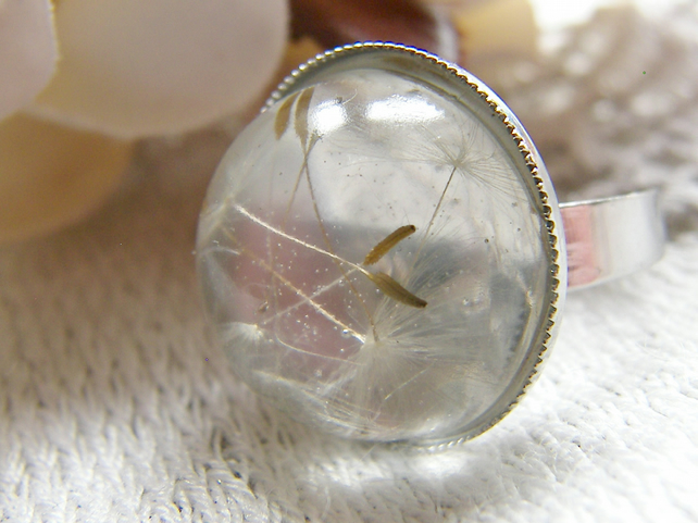 Real Dandelion Seeds Ring In Clear Resin One Size - Make a Wish