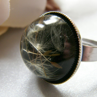 Real Dandelion Resin Ring - Make a Wish