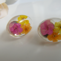 Real Flower Earrings, Resin Oval Studs