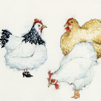 Hen Print Hens in Shoes A4 giclee print