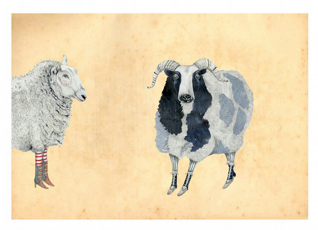 Print Sheep A4 Giclee illustration print