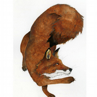 Fox Giclee A4 Print Mr Red Fox