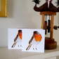 Robin Christmas cards 5x5inch Christmas Greeting cards