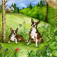 Original Watercolour painting of two Boston Terriers in a garden