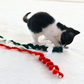 3 Kittens or Adult Cats Xmas Colours Cat Twist Toy
