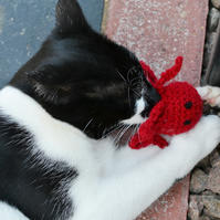 Catnip Crochet Octopus, New Cats Gift, Cats Mouse