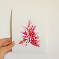 Pressed Seaweed No:10 Giclee Art Print