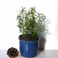 Herb Flower Pot -  Pottery Ceramic Wheelthrown Stoneware UK