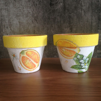 A pair of Lemon Pots