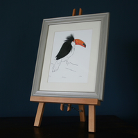 Toucan print with feathers