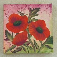 Poppy canvas