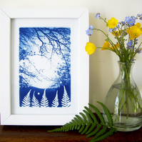 'Fern forest twilight' Original Cyanotype