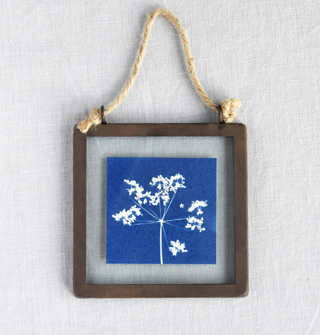 Cow Parsley Cyanotype in industrial style metal and glass square frame